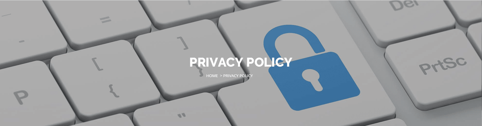 privacy policy carsirent